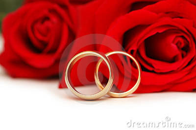 Two wedding rings and roses isolated on white