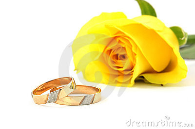 Two wedding rings and yellow  rose
