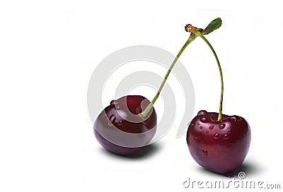 Two wet cherries