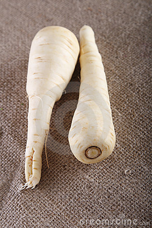 Two white parsnip roots on brown hessian rustic