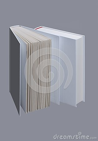 Two white plain books for design layout