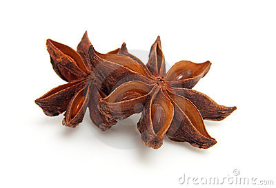 Two whole star anise in closeup