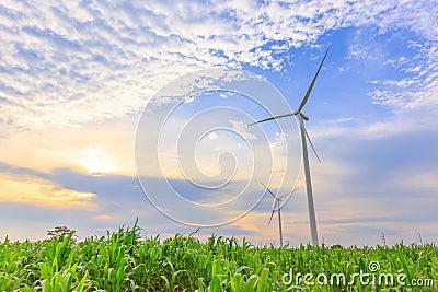 Two Wind Turbine Generators
