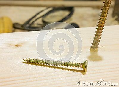 Two wood screw
