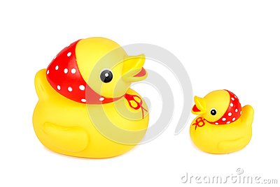 Two yellow ducks isolation