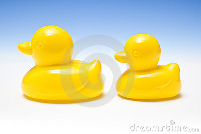 Two yellow rubber ducks
