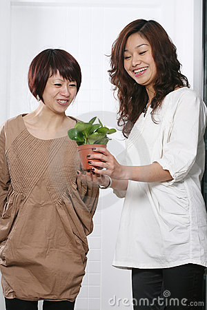 Two Young beautiful asia girl