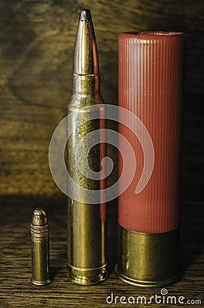 Understanding Ammunition Types and Terminology   Peak ...