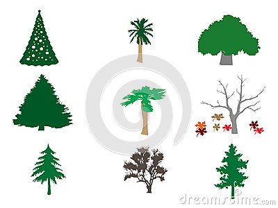 Types of Trees Illustration