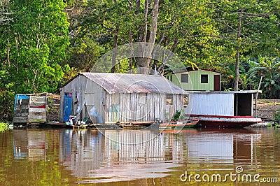 Typical Amazon Jungle Home (Amazonia)