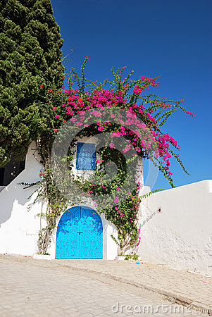 Typical door in Sidi Bou Said