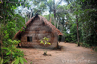 Typical habitation of the native amazon people