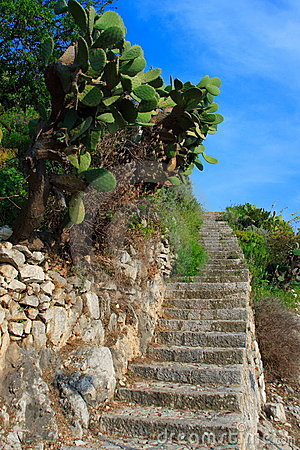 Free Typical Sicilian Staircases Stock Photo - 2383950