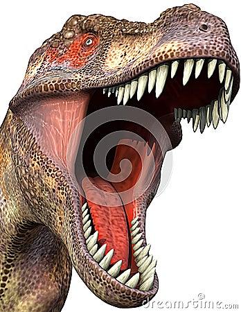 Tyrannosaurus close-up 2