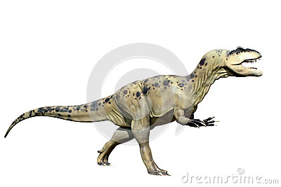 Tyrannosaurus rex isolated on white