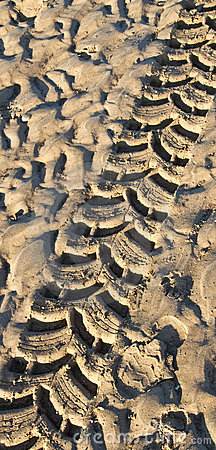 Tyre track in wet sand