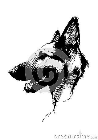 Tysk herde för hund