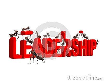 αγορά ηγεσίας ηγετών ανάπτ&u