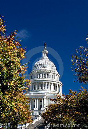 U.S. Capital Building Washington DC Autumn Yellow