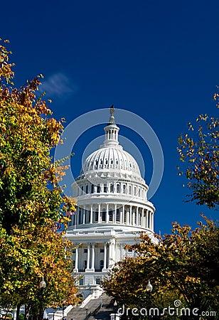 U.S. Capital Building Washington DC Autumn Yellow