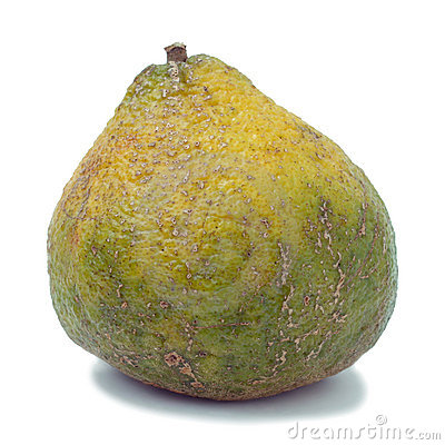 Ugli Fruit Also Called Uniq Fruit