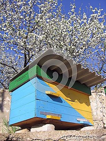 Ukrainian beehive