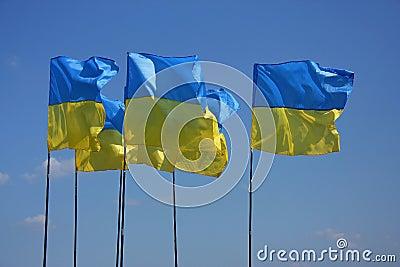 Ukrainian flags