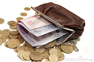 Ukrainian money in pouch