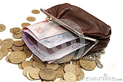 Ukrainian money in pouch