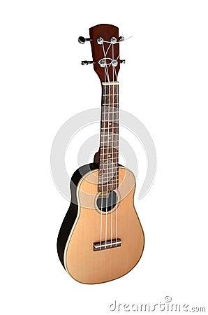 ukulele  white background stock images image