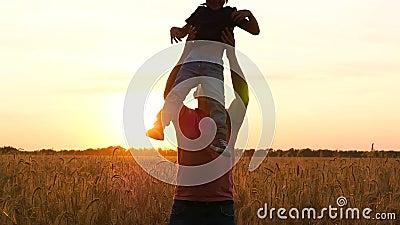 Um pai feliz joga com uma criança em um campo de trigo no por do sol O paizinho joga seu filho acima Emoções da alegria, felicida vídeos de arquivo