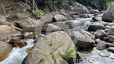 Um riacho de montanha flui através de grandes pedras, espuma do fluxo de água selva video estoque