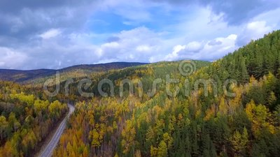 Um voo aéreo da primavera sobre a floresta Rússia Buriácia do outono da estrada filme