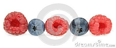 Uma fileira de frutas de baga