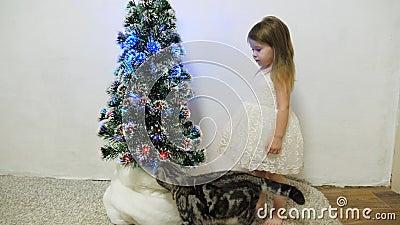 Uma garotinha brinca perto de uma árvore de Natal em um quarto infantil com um gato Bebê e árvore de Natal Feriados de Natal filme