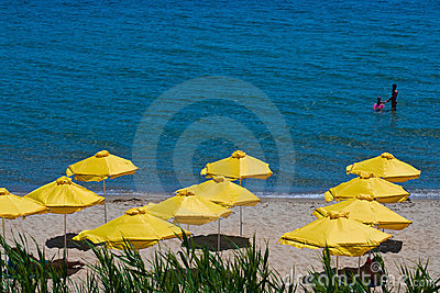 Umbrella on beach. view in Sunny Beach - Bulgaria
