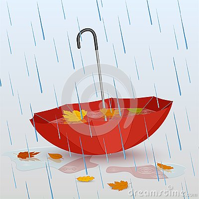 Free Umbrella In The Rain, Puddles Of Water And Fallen Yellow Leaves Stock Images - 102696044