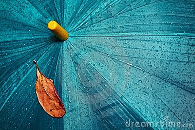 Umbrella and yellow leaf