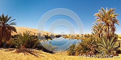 Umm al-Ma Lake - Desert Oasis - Sahara, Libya