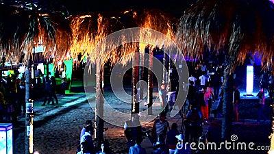 Un chemin avec des palmiers près de la barre de plage banque de vidéos