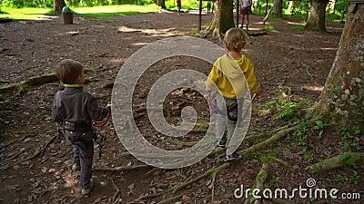 Un colpo lento di due ragazzini in un cavo di sicurezza in un parco di avventura della foresta Centro all'aperto di divertimento  archivi video
