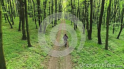 Un cycliste MTB sillonne un sentier forestier Vue aérienne banque de vidéos