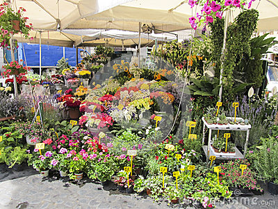 Un florista al aire libre