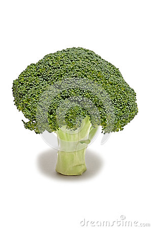 Un gambo sano di broccolo fresco