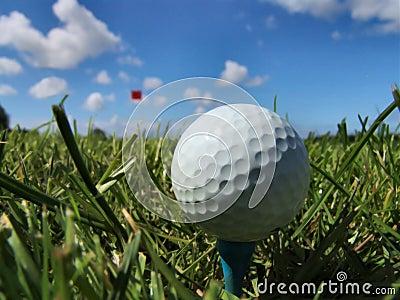 Un giorno perfetto per golf