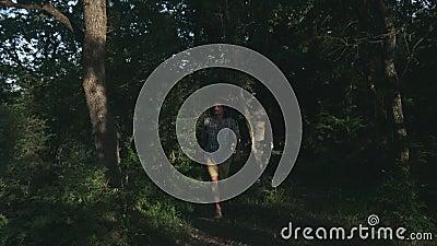 Un giovane contadino che cammina nel legno Viandante che fa un'escursione nella foresta al tramonto Stile di vita attivo Portare  archivi video