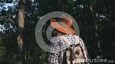 Un giovane contadino che cammina nel legno Viandante che fa un'escursione nella foresta al tramonto Stile di vita attivo Portare  stock footage