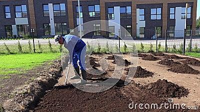 Un jeune homme travaille dans un jardin en nivelant un sol fertile avec un râteau Capture statique banque de vidéos