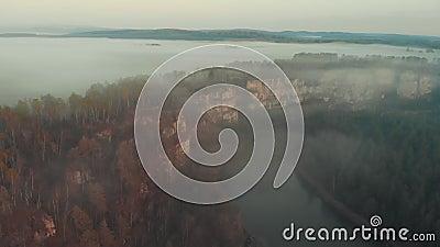 Un paisaje brumoso hermoso del río y del bosque de la picea en las montañas metrajes