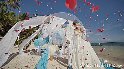 Un par de la boda en una playa tropical al lado del océano Beso debajo del arco con los molinetes reguladores blancos y azules qu metrajes